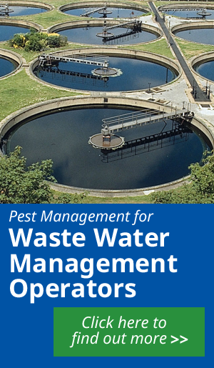 Find out more about our Pest Management for Water Waste operators services